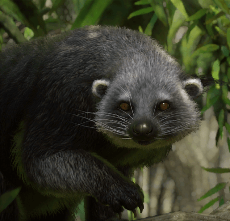 Planet Zoo Southeast Asia Animal Pack Binturong