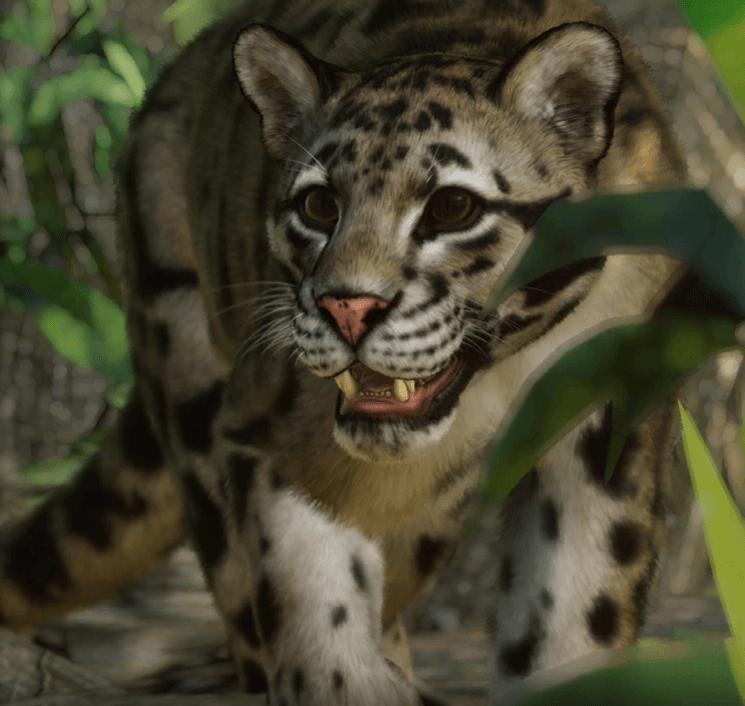 Planet Zoo Southeast Asia Animal Pack Pantera nebulosa