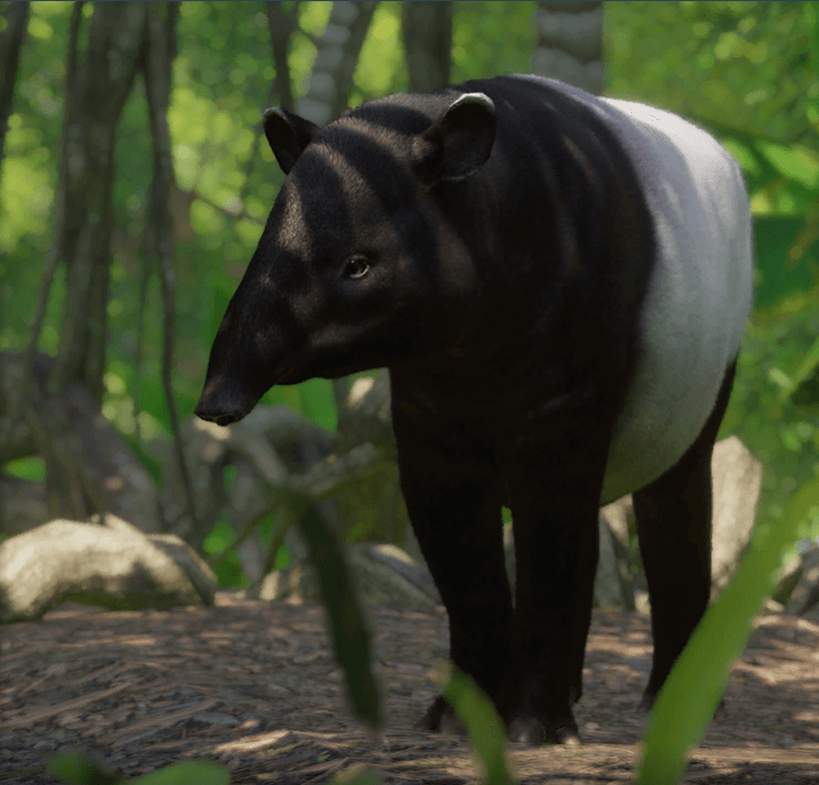 Planet Zoo Southeast Asia Animal Pack Tapir malayo